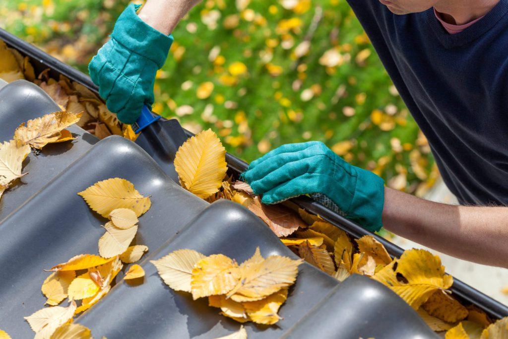 Évacuez les feuilles