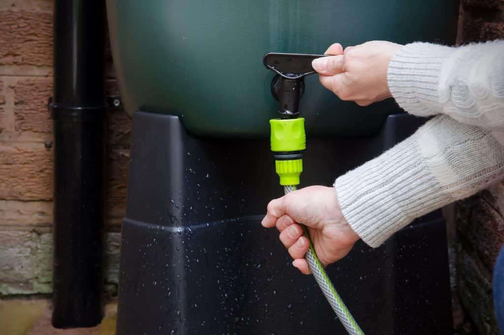 économiser de l'eau jardin