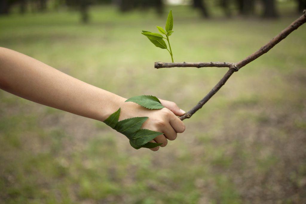 Wat is CO2 en waarom moeten we erop besparen?