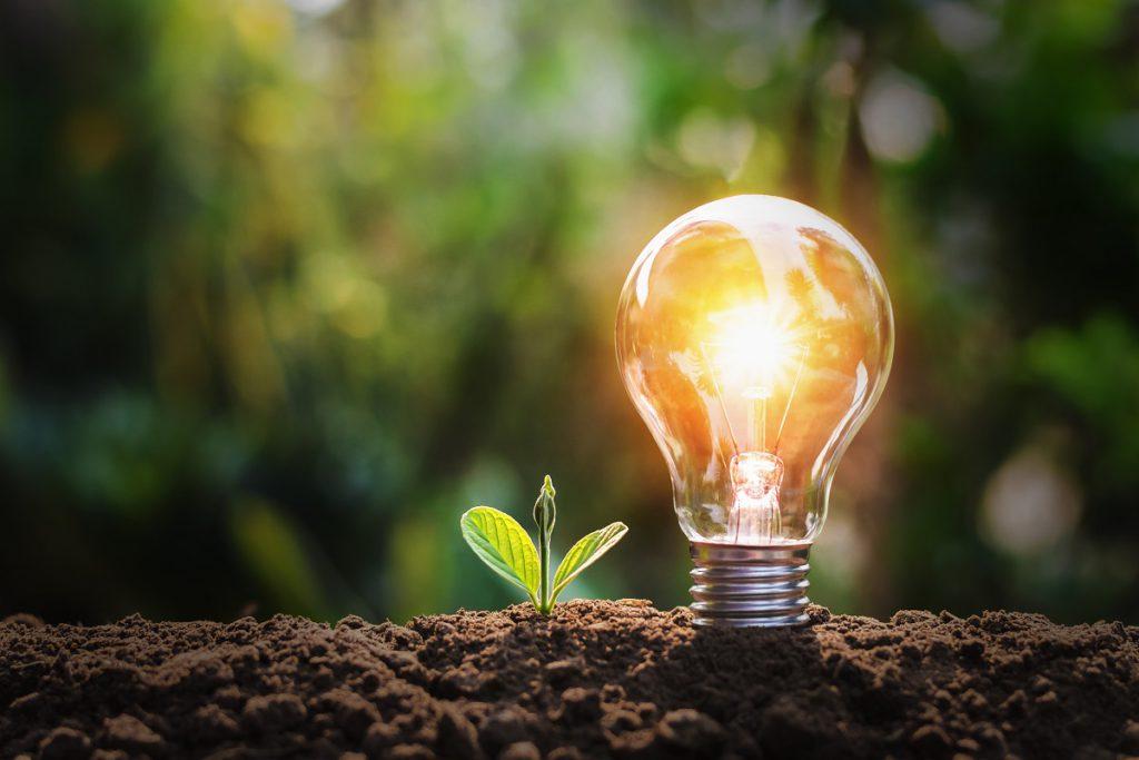 Gemakkelijk energie besparen in de tuin